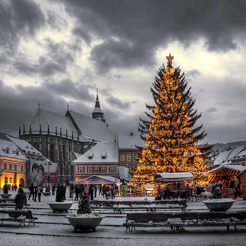 HDR - Winter Christmas Tree