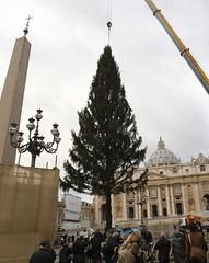 Vaticano se prepara para Navidad