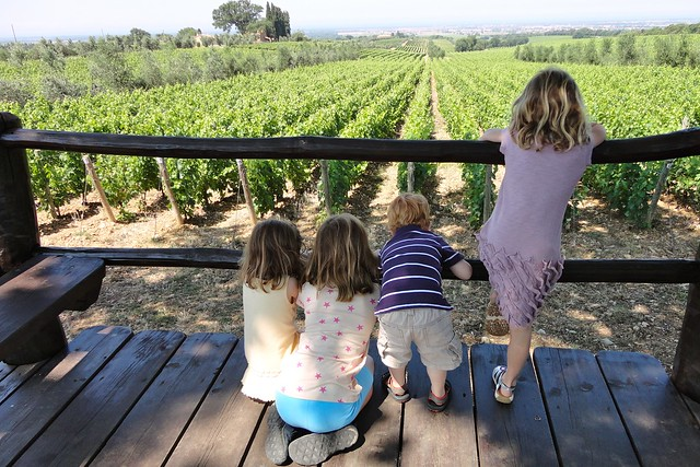 planning group trips to italy children in the vineyard