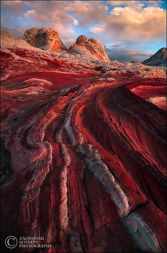 coyote sunset red arizona sunrise landscape sandstone desert earth planet buttes whitepocket