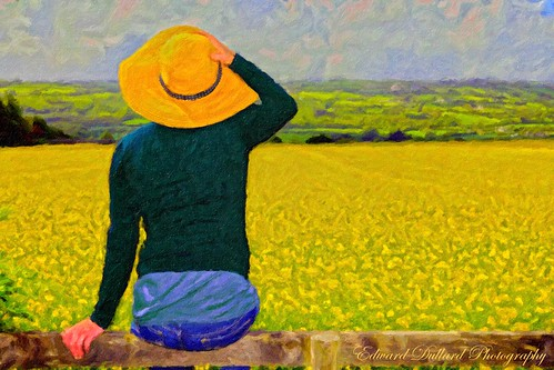 A tribute to Van Gogh.   reworked in PS.