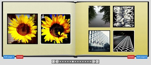 Steve Garfield | Keepsy Instagram Book inside pages