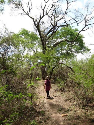 malawi hiking