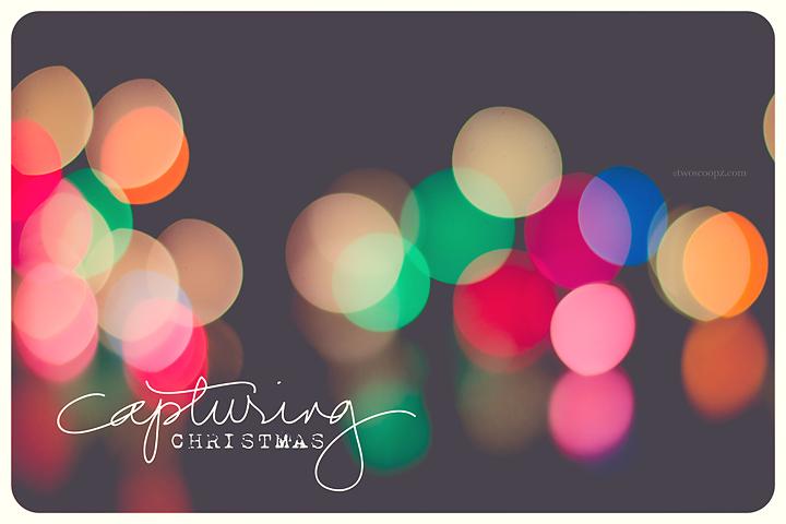 season of lights
