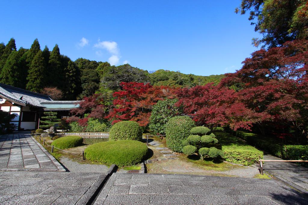 Saihouji (Kokedera) (3)