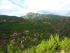 Punta Radichella par la sente de chasseurs : la crête du Niffru en face et l'aiguille 1059m