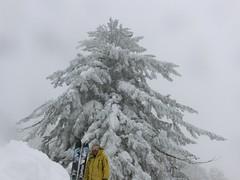 クリスマスイヴにミクとツリーの前で