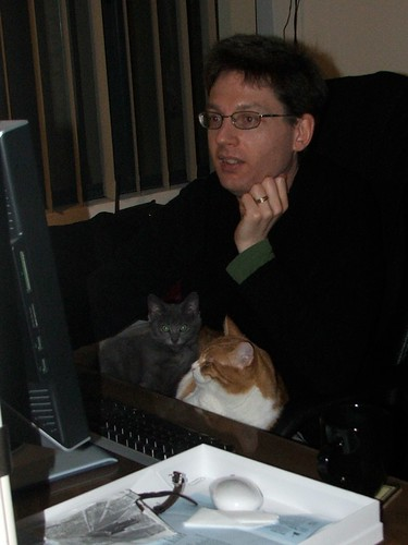 This is Joel playing his favourite online game with his feline associates assisting.