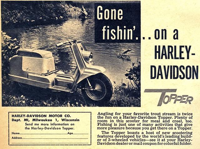 Harley Davidson Jr.