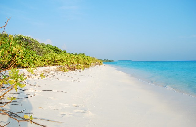 Sunny Day out in Fulhadhoo (Maldives)