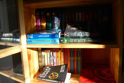 fifteen shelf