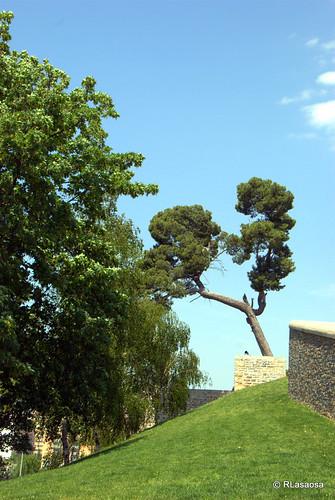 Un rincón arbolado en La Ciudadela de Pamplona