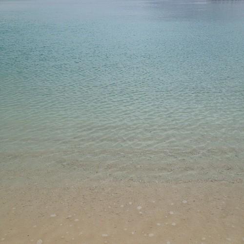 ホテル敷地内の海。水が綺麗!