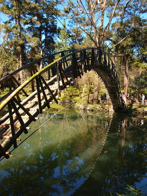 大學池的竹橋