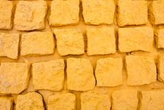 Dried Yellow Fountain