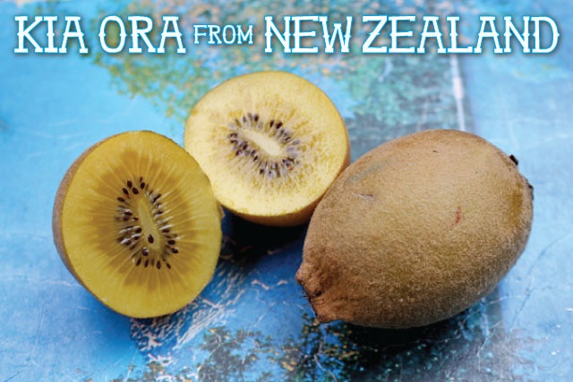 NZ postcard