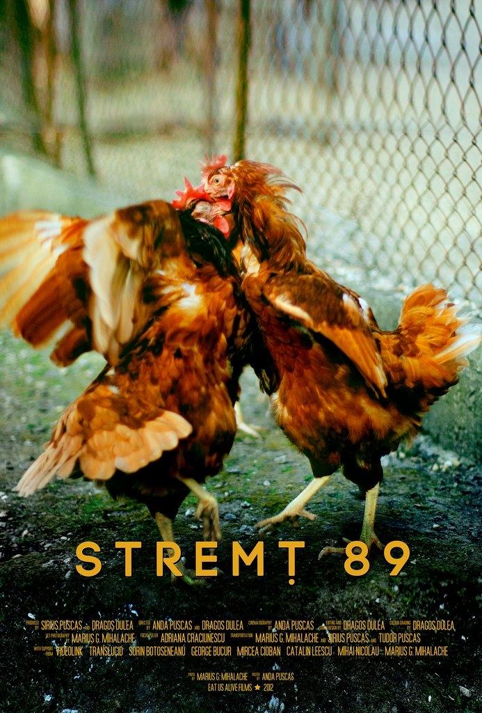 stremt89 poster