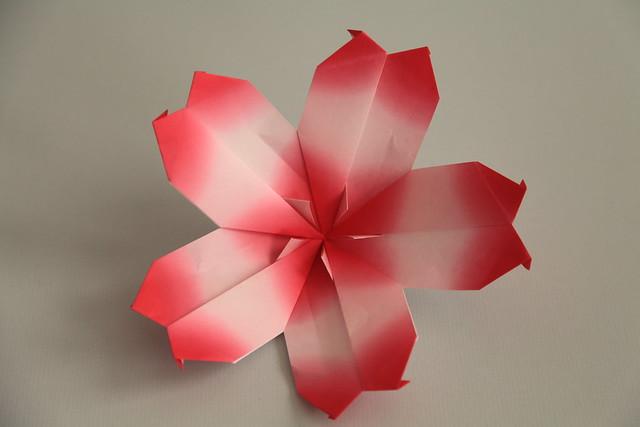 origami cherry blossom   Flickr - Photo Sharing! - photo#17