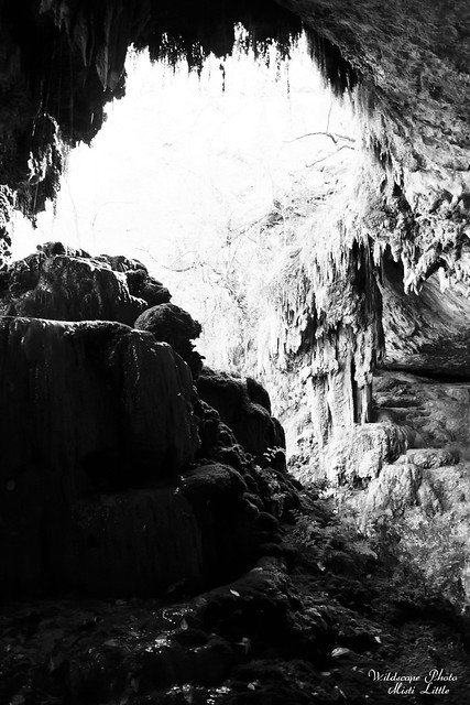 westcave7