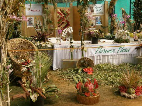 lalbaghflowershow2012003