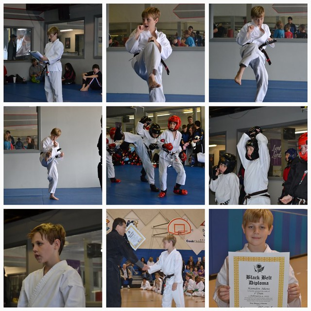 karate collage