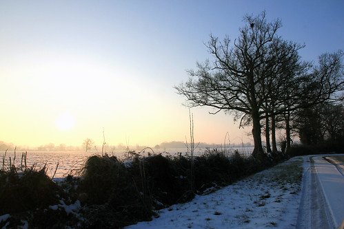 IMG_4886_sous la neige