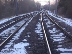 Roydon line S