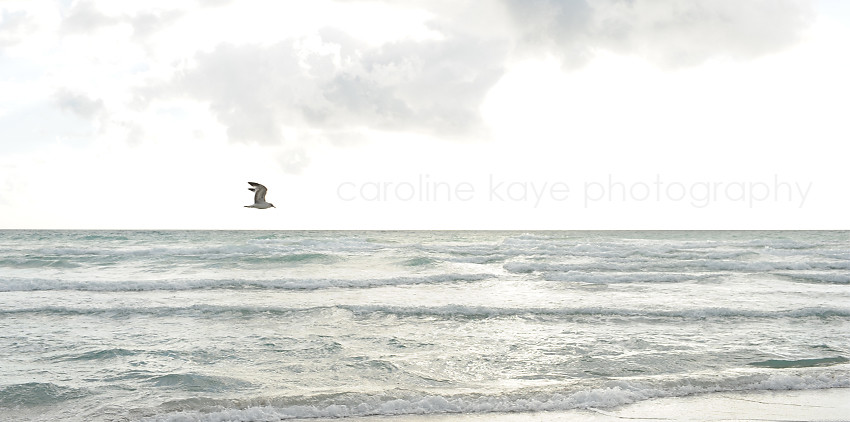 Florida-Photo_Shoot_OPener2