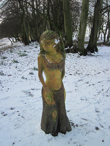 Hardwick Park - Carving