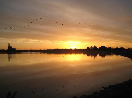 desktop sunset sky lake reflection bird nature water glass beautiful minnesota night clouds evening midwest dusk flock flight scenic chandler mn smalltown slayton walpaper highway30 lakewilson buffaloridge murraycounty