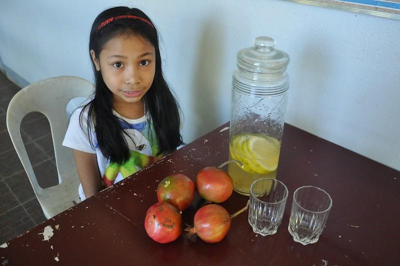 Pomegranates and Lemonade