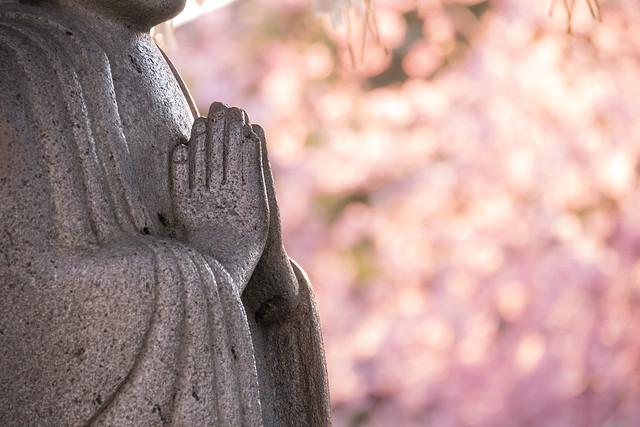 20140328_01_Pray of spring