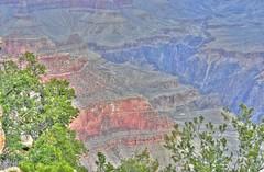 Grand Canyon 2014