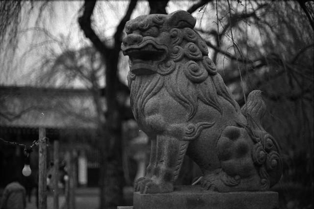 狛犬 - Guardian lion-dog at Shinto shrine