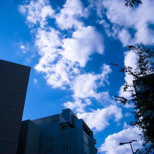 2011-11-25の空