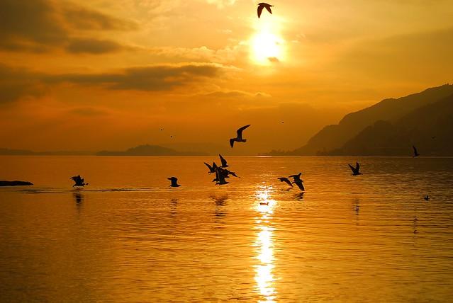 Lac de Bienne animation et coucher de soleil