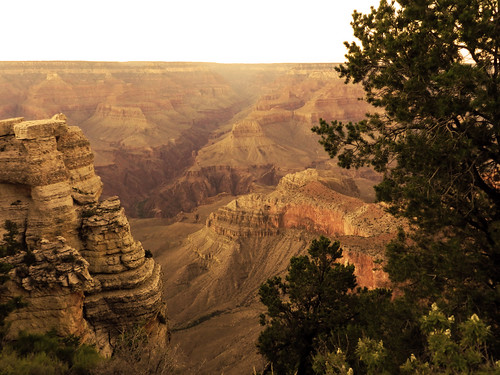 Warm Grand Canyon