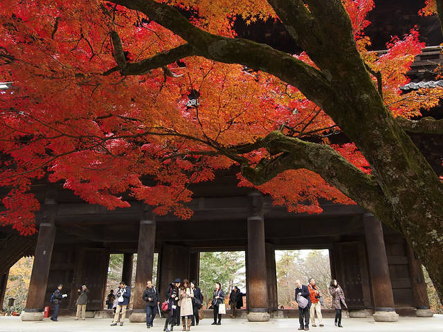 Finally, turned red in Kyoto