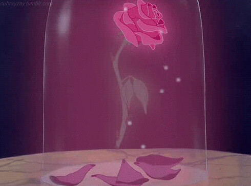 The Enchanted Rose - Inspiration