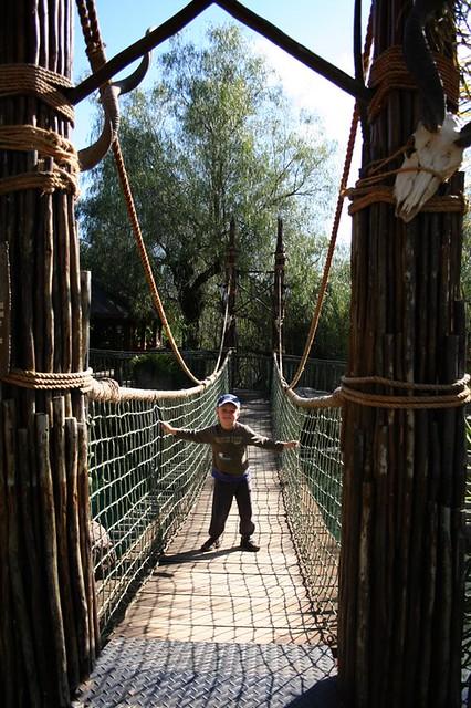 Cango Wildlife Ranch 2