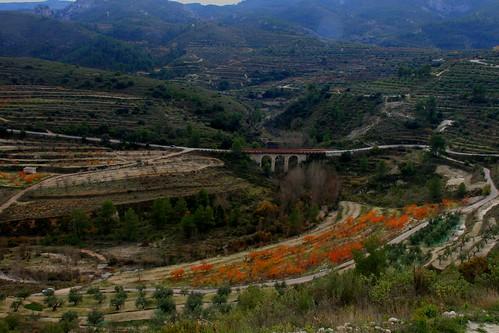 Pont de les Calders 2