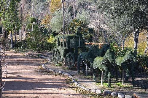 Carruaje, El Bosque Encantado