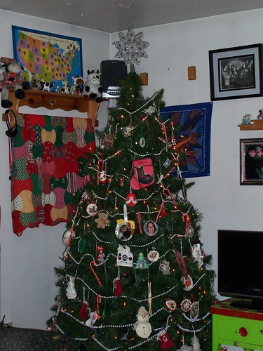 rents xmas tree