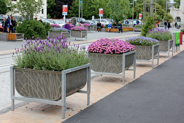 Flower boxes in Christchurch