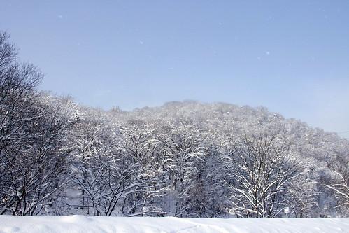 雪舞う青の空