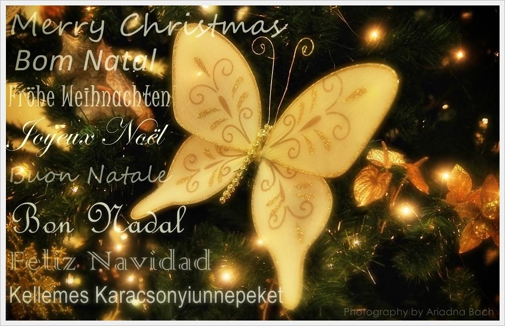 Bon Nadal 2011