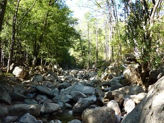 Remontée du Carciara en amont du canyon : la partie en éboulis rocheux