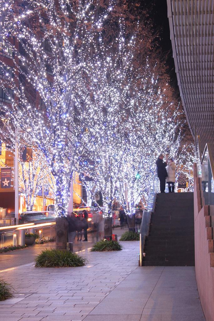 Roppongi Illumination 2011 (12)
