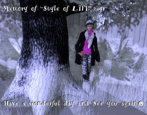 Memory of ~Style of LIFE2011~ by Kitt+