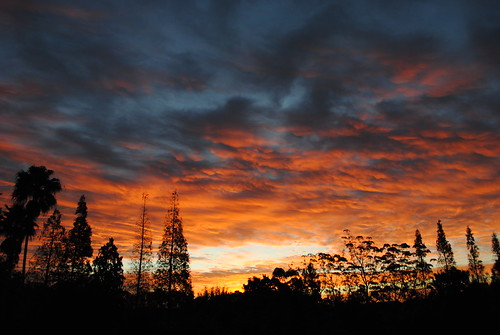 Central Florida Sunrise 12/29/2011